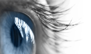 Innovation : AI at the service of diabetic retinopathy